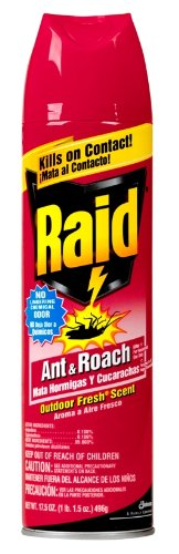 Raid Ant & Roach Killer  Outdoor Fresh  17.5-Ounce Cans (Pack of 12)