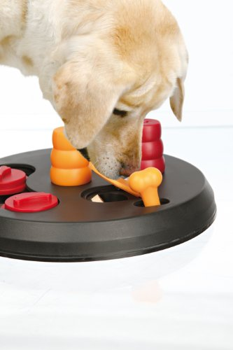 Online shopping for Pet Supplies from a great selection of Apparel & Accessories, Shop Our Huge Selection· Read Ratings & Reviews· Fast Shipping· Explore Amazon DevicesBrands: PawFlex, Kats'N Us, Guardians, Leucillin, Angel Pet Supplies Inc. and more.