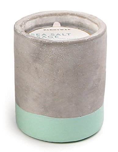 paddywax-urban-collection-soy-wax-candle-in-concrete-pot-sea-salt-sage