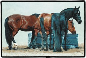 SIMPLE PLEASURES HORSES DOORMAT Adeline Halvorson