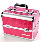 Beauty Makeup Therapist Artist Cosmetics Case Box #120