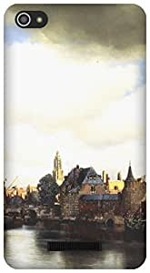 The Racoon Grip View of Delft hard plastic printed back case / cover for Micromax Canvas Hue 2 A316