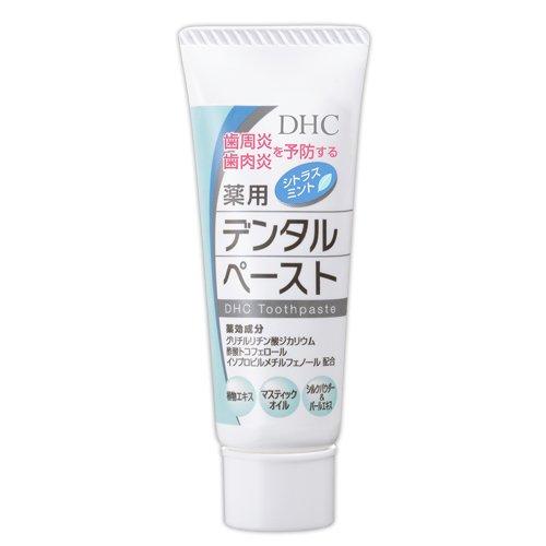 DHC薬用デンタルペースト(薬用歯みがき)