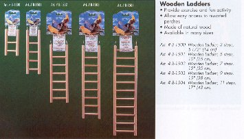 Buy Low Price Living World Wooden Ladder Small Animal Toy Size: 5 Steps (B0002ARPW4)