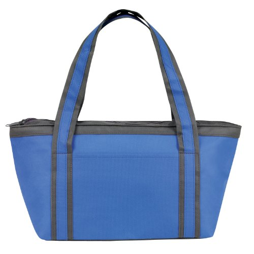 Fashionable Insulated Cooler Tote Bag, Light Blue By Bags For Less