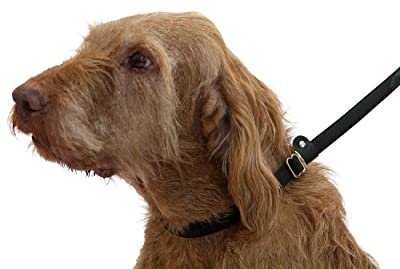 Dogs & Co Figure of 8 Dog Lead, stops dogs pulling - PROBABLY THE BEST DOG LEAD IN THE WORLD. 3 leads in 1