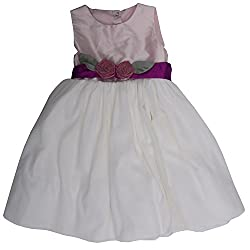 Buttercups Girls' 4 years Net Party Dress (SLNT01D, White, 24 inches)