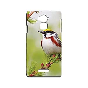 BLUEDIO Designer Printed Back case cover for Coolpad Note 3 - G2971