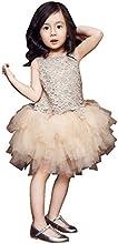 Champagne Princess Dress Girls39 Tutu Wedding Party Skirt