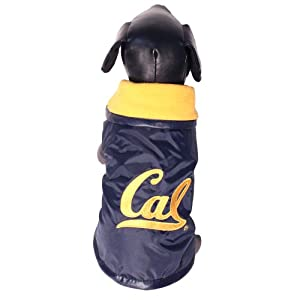 NCAA California Golden Bears All Weather Resistant Protective Dog Outerwear, XX-Large by All Star Dogs