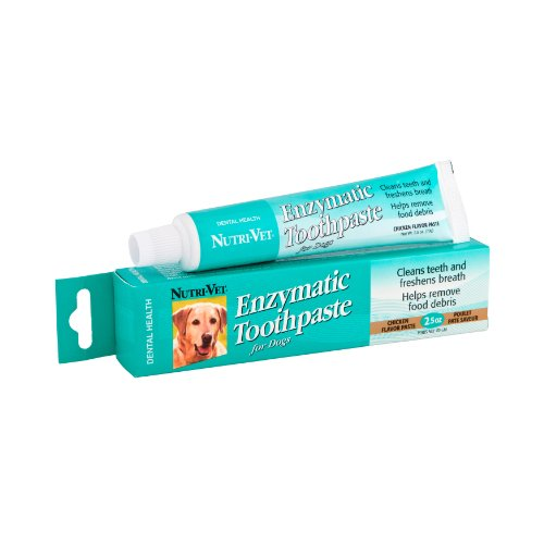 Does dog toothpaste expire