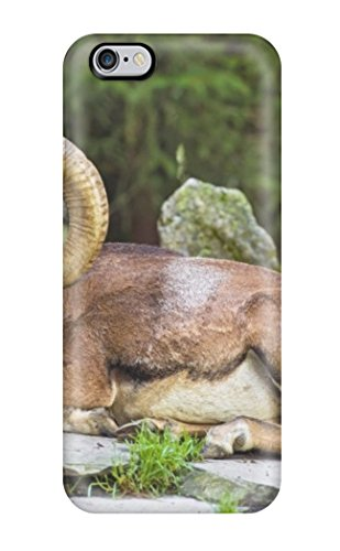 Defcxyc1707Bzdso Goat Animal Fashion Tpu 6 Plus Case Cover For Iphone