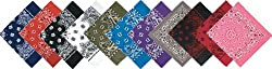 Assorted Military Army Trainmen Paisley Bandanas