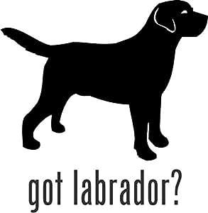 "Amazon.com: Got Labrador Sporting Dog Vinyl Decal Sticker- 10"" Tall"