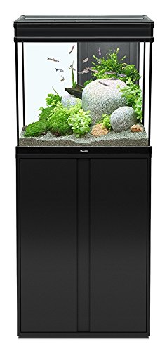 Ensemble aquarium expert led 136 litres 60x40 cm noir for Meuble 60x40