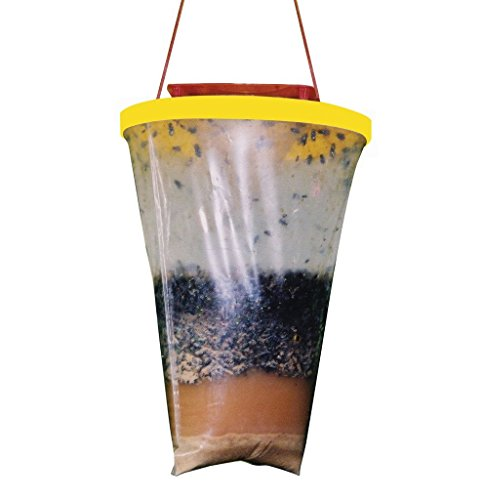 Non-Toxic Disposable Outdoor Fly Traps Fly Catcher (Mice Removal compare prices)