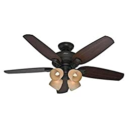 Hunter 52 in. Channing New Bronze Ceiling Fan with Light Kit