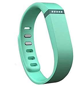 Replacement Wrist Band for Fitbit Flex (Aqua, Small)