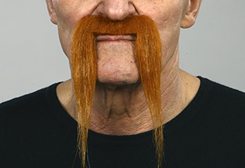 Ginger Fu Manchu moustache