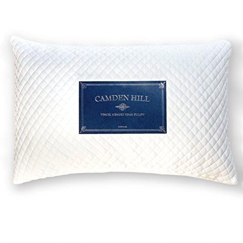 camden-hill-memory-foam-tencel-pillow-queen