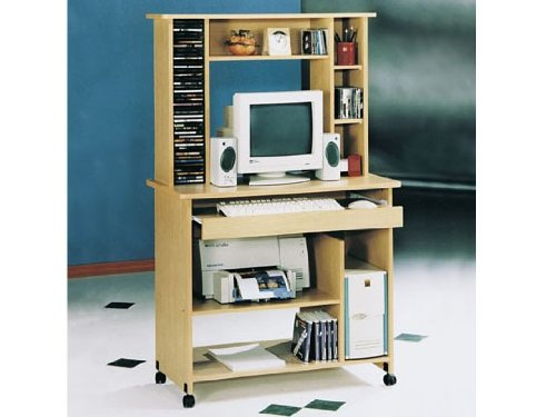 Buy Low Price Comfortable Aspen Fall Computer Desk by Acme Furniue (B005G4UODI)