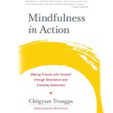 Mindfulness in Action: Making Friends with Yourself through Meditation and Everyday Awareness (       UNABRIDGED) by Chögyam Trungpa Narrated by Roger Clark