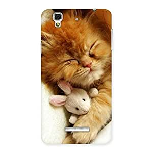 Premium Sleeping Cat with Bunny Multicolor Back Case Cover for Yu Yureka