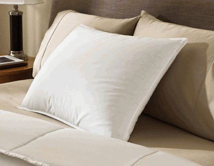 Encompass Group ® 50/50 Grey Duck Feather and Down Pillow Queen Size Pillow Set (2 Queen Pillows)