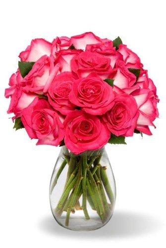 18 Long Stem Bi-color Pink Roses – With Vase – Same Day Flower Delivery, Next Day Flower Delivery, Send Flowers Online, International Flower Delivery, Online Flowers, Flowers Online Delivery, Birthday Flowers Delivery