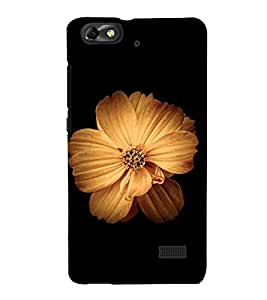 Beautiful Flower 3D Hard Polycarbonate Designer Back Case Cover for Huawei Honor 4C :: Huawei G Play Mini