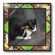 Animal Themes - Barnyard Cat - Wall Clocks