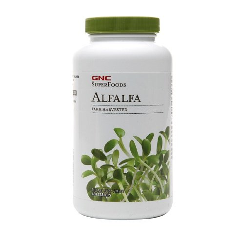 Gnc Superfoods Alfalfa 500Mg, Tablets 480 Ea