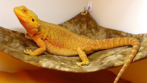 Hammock for Bearded Dragons, Brown Batik fabric with suction cup hooks