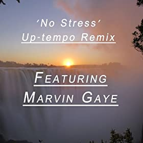 No Stress (Remix Feat. Marvin Gaye)