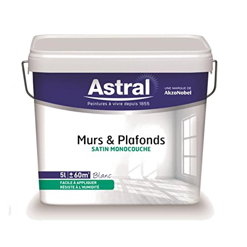akzonobel-as5212019-vernice-per-pareti-soffitti-monostrato-5-l-1-l-colore-bianco-satinato