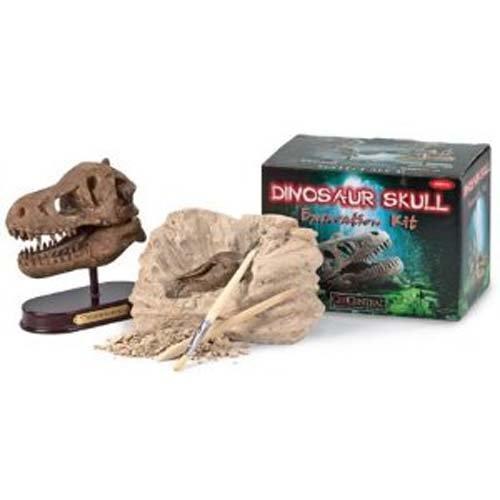 Dino Skull Excavation Kit