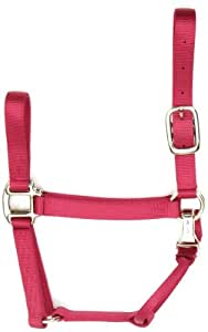 Accent 1-Inch wide Premium Halter for Small Horses, 700 to 1000-Pound, Red