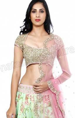 40ec55517 Shree impex-001 Mira Impex Womens Multi Colour Net Lehenga Choli- Price in  India