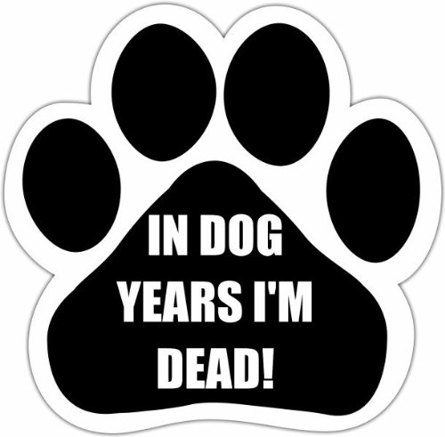 E&S Pets 13125-171 Dog Car Magnet front-113701