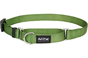 Red Dingo Classic Martingale Dog Collar, Large, Green