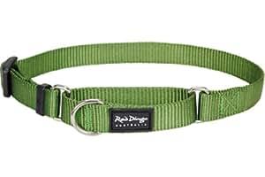 Red Dingo Classic Martingale Dog Collar, Medium, Green