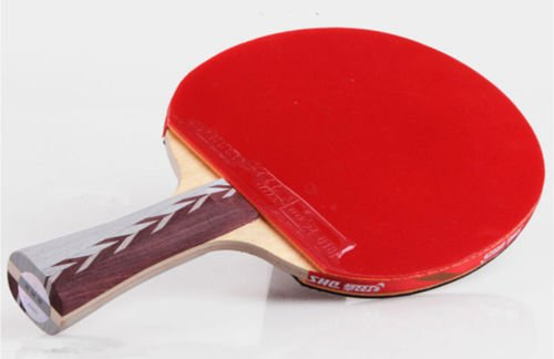 Ping Pong Table Tennis Racket Paddle Bat Blades DHS 4002 4 star Brand New UK01