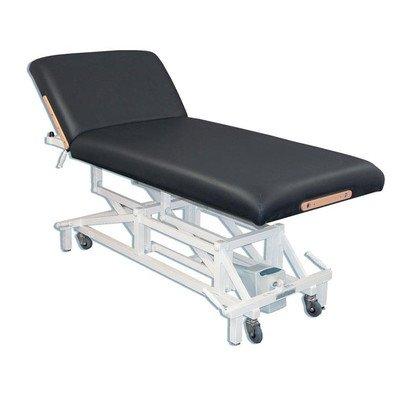 Mckenzie Lift Back Electric Massage Table Color: Purple