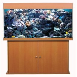 Aqua Medic Anthias 130 mit Fish