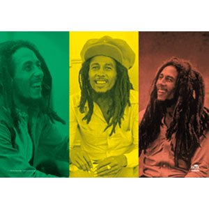 Bob Marley Rasta Collage Cloth Fabric Poster Flag