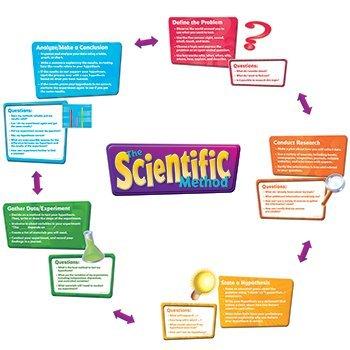 The Scientific Method Bulletin Board Set