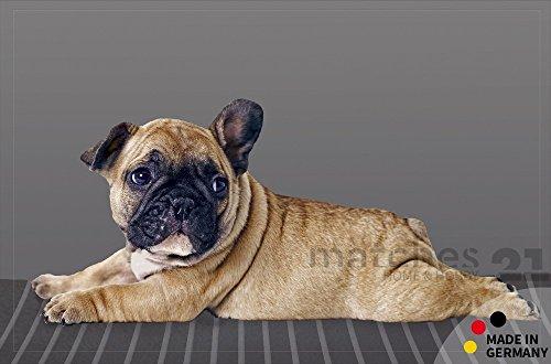 fussmatte-fussabstreifer-flat-hund-tiermotiv-liegende-bulldogge-50x80-cm-extra-flach-maschinenwaschb