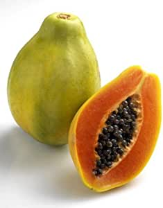 E plant Papaya Seeds