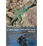 img - for Amphibians, Reptiles, and Their Habitats at Sabino Canyon (Southwest Center) (Paperback) - Common book / textbook / text book