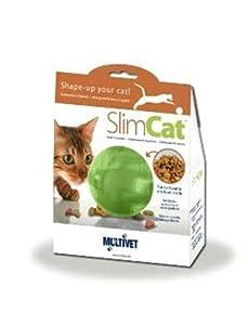 Petsafe SlimCat Meal Dispensing Cat Toy, Green